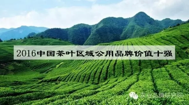 2016中国茶叶区域公用品牌价值十强出炉!